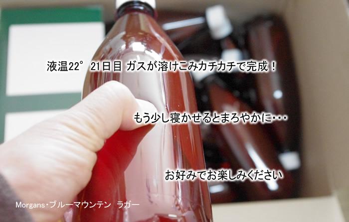 ペットボトルに炭酸が入れば出来上がり